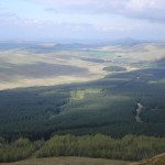 Liddesdale panorama